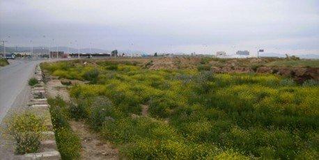 Un homme retrouvé mort dans sa voiture emportée par les eaux au Nord de l'Oued Ech Chott (Ain-Oulmène,Sétif)