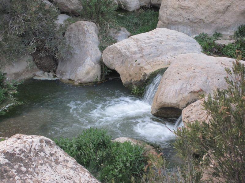 L'Oued de Ouled Tebben ,Mars 2011