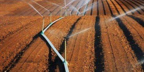 Algérie : Grand déficit de pluviométrie-Le spectre de la sécheresse plane sur les hauts plateaux du pays