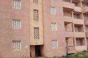 Près de 100 logements qui seraient la propriété de la Caisse Nationale d'Epargne et de Prévoyance de Ain Oulmène (CNEP)  laissés à l'abandon