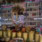 Prolifération de magasins herboristes sans précédent dans la ville de Ain Oulmène