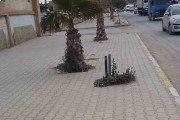 Des citoyens dénoncent l'absence d'éclairage public du quartier sis à l'entrée de Cherchoura de la ville de Ain Oulmène