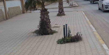 Les citoyens dénoncent l'absence d'éclairage public du quartier sis à l'entrée de Cherchoura de la ville de Ain Oulmène